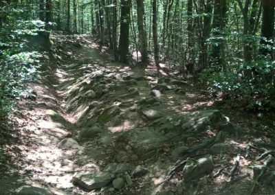 strada romana 2