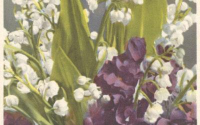 Josef Heurtens, cartolina del 2 gennaio 1945